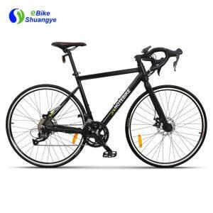 48V 18 speeds hidden battery electric road bike